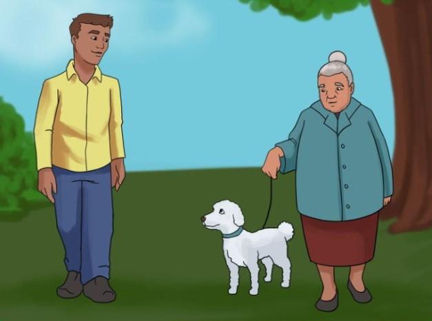 ۱۰ نکته برای نزدیک شدن بی خطر به سگهایی که نمی شناسید