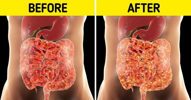 مصرف آووکادو چه تأثیری بر روده ها دارد؟