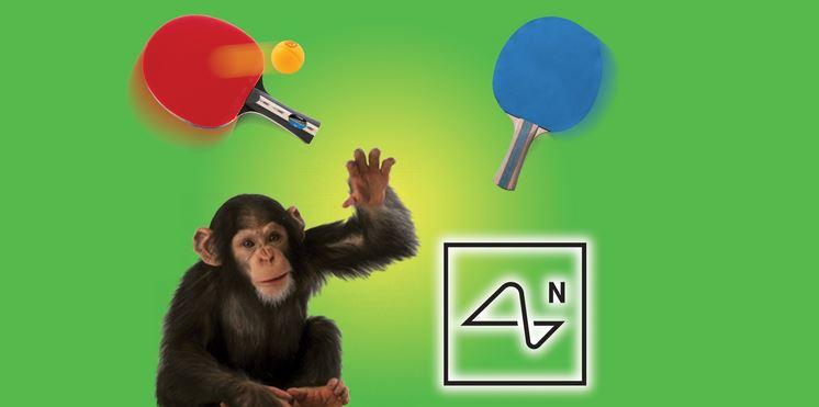 استارتاپ Neuralink، میمونی به نام پیجر را نشان می دهد که چیپ هایی در دو طرف مغز او کارگذاری شده و در حال انجام بازی Mind Pong است.