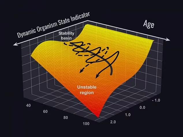 انسان ها هیچگاه قادر نخواهند بود بیش از 150 سال عمر کنند و این نتیجه تحقیقاتی است که دانشمندان بدست آورده اند.