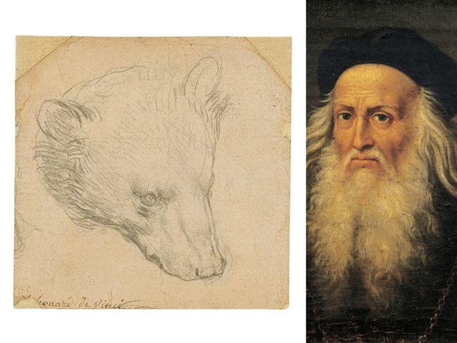حراج نقاشی «سر یک خرس» اثر لئوناردو داوینچی با قیمت ۸ تا ۱۲ میلیون پوند
