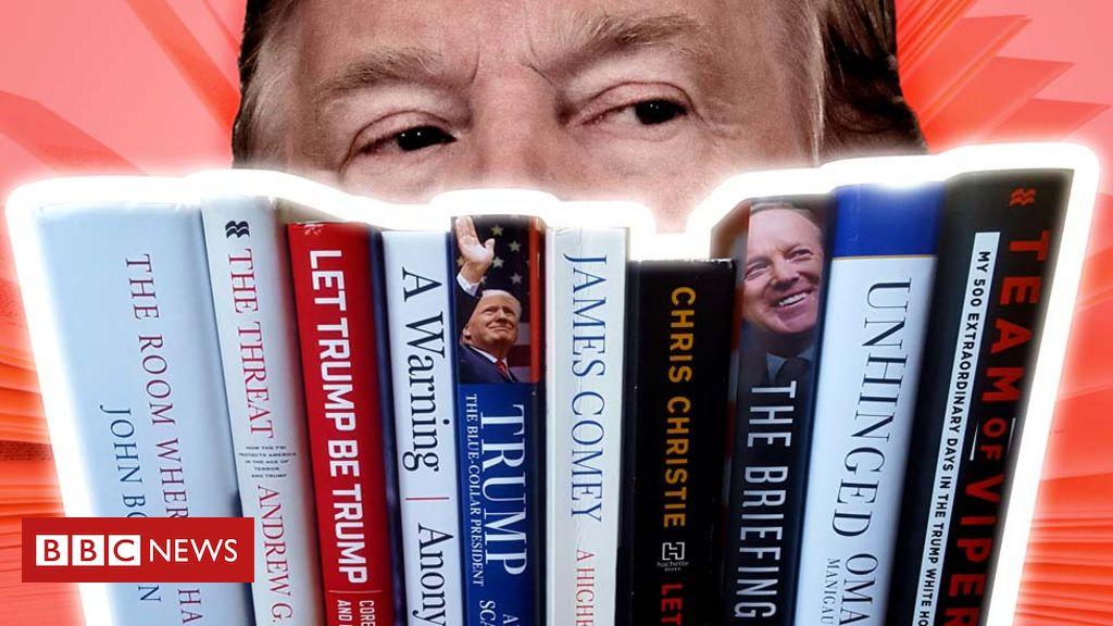 دونالد ترامپ مدعی شده است که در حال نوشتن «کتاب همه کتاب ها» است، کتابی که پرفروش ترین کتاب های تاریخ را نیز کنار خواهد زد