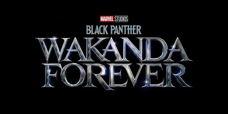 Black Panther 2 Title Wakanda Forever - تمام فیلم ها و سریال های اسپین آفی که بر اساس Black Panther ساخته می شوند