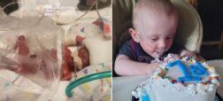 پیروزی جنگجوی کوچک؛ نارس ترین نوزاد دنیا تولد یک سالگی خود را جشن گرفت