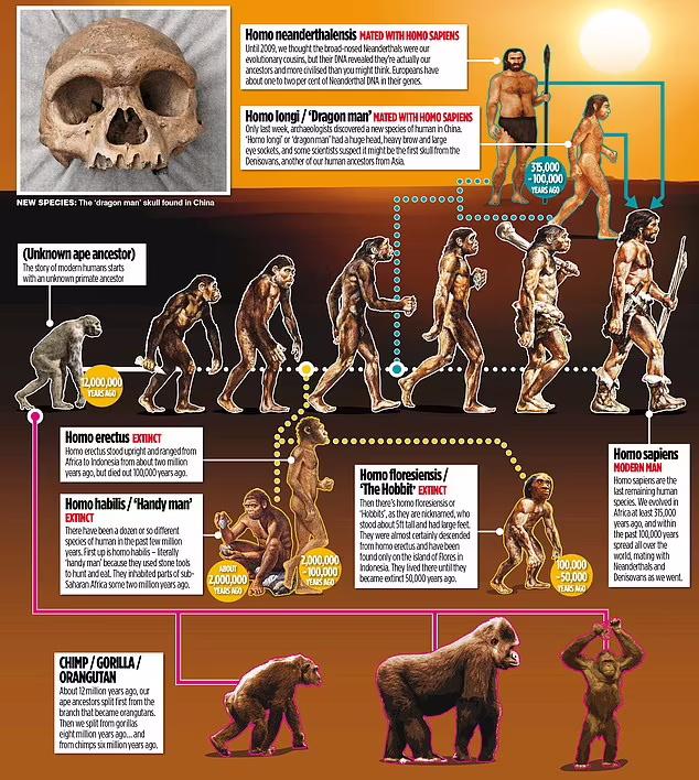 کشف جمجمه ای تازه در چین باعث شده که نظریه تکامل چارلز داروین و ایده انتخاب طبیعی او به شکلی بی سابقه به چالش کشیده شود