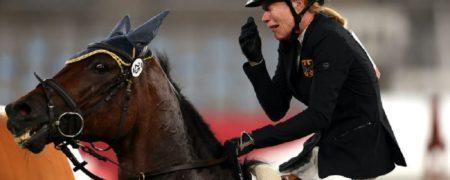 پیشنهاد خرید اسبی که از مربیاش در المپیک کتک خورد توسط بازیگر «تئوری بیگ بنگ»