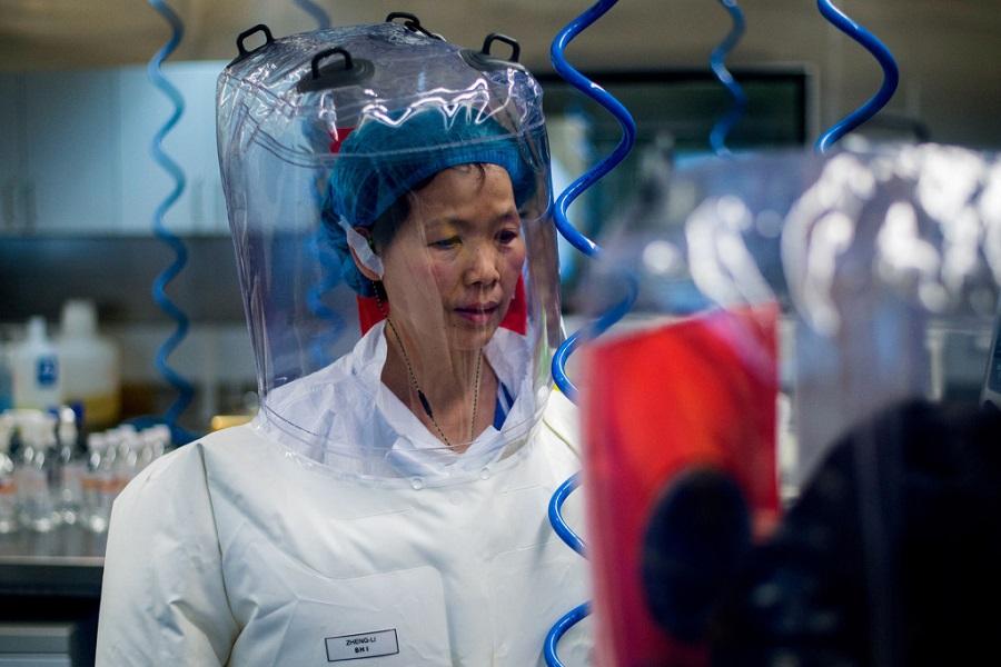 هشدار «زن خفاشی» چین درباره ویروس کرونا؛ جهش های مرگبارتری در راه است