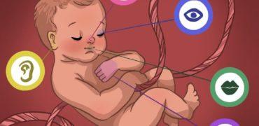 ۴ روش برای آموزش به جنین در دوران بارداری را بشناسید