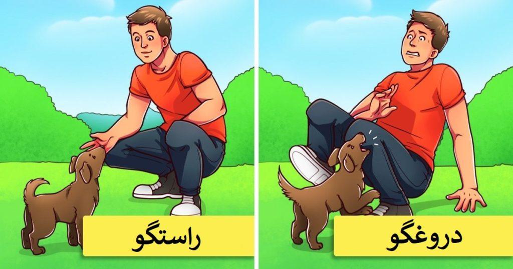 سگ ها می توانند دروغ را تشخیص دهند