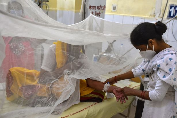 یک تب مرموز که جان ده ها کودک در هند را گرفته و بیش از 30,000 نفر دیگر را مبتلا کرده، باعث شده وحشت از شکل گیری یک اپیدمی دیگر شده است.