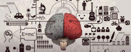 تئوری Mi یا هوش های چندگانه چیست؟