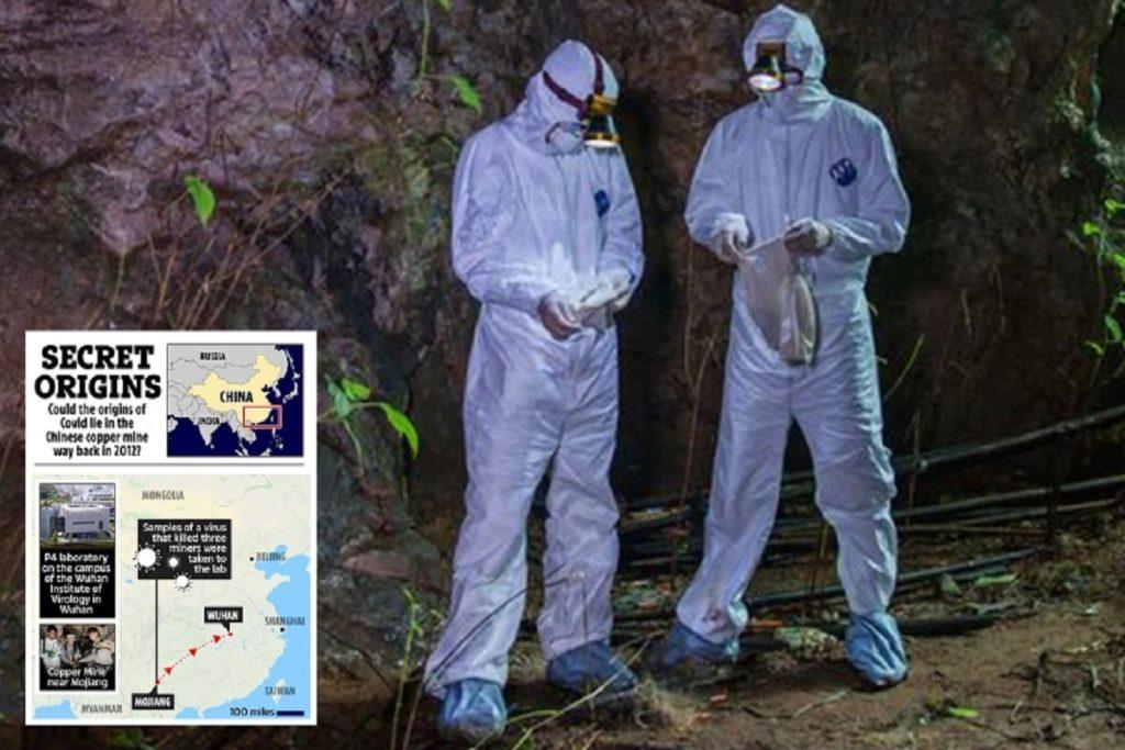 نظریه جدید درباره منشا ویروس کرونا: متهمان اصلی، ادرار و مدفوع خفاش