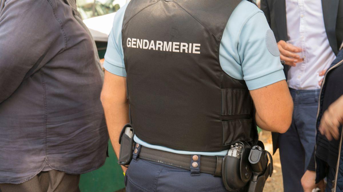 یک مامور پلیس فرانسوی در یادداشتی پیش از خودکشی مدعی شد او همان قاتل سریالی مشهور به Le Grele به معنای «مرد آبله ای» است